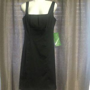 NWT size 6/Blu Sage dress